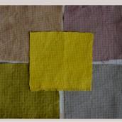 Meu projeto do curso: Tingimento têxtil com pigmentos naturais. A Fiber Arts project by Márcia Cristina da Silva Sousa - 05.17.2020