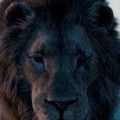 Lion. Un proyecto de 3D de Jonathan Aceituno Fuentes - 04.06.2020