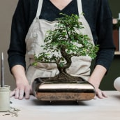 Mi Proyecto del curso: Diseño de macetas en cerámica. A Crafts, Interior Design, Decoration, and Ceramics project by Xènia Bas - 06.24.2020