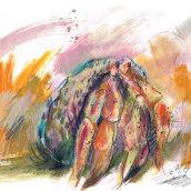 Hermit Crabs. Un progetto di Illustrazione di Laura McKendry - 28.06.2020
