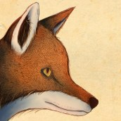 Mi Proyecto del curso: Ilustración naturalista de animales con Procreate. A Drawing, Illustration, and Digital illustration project by Ruth Reuveni - 07.08.2020