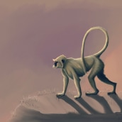 Semnopithecus Entellus My project in Naturalist Animal Illustration with Procreate course. A Illustration project by Valeria Carnevali - 10.25.2020