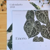 Calendario 2021. A Design, Illustration, Painting, Paper Craft, Drawing, Watercolor Painting, and Botanical illustration project by Isabela Quintes - 11.10.2020