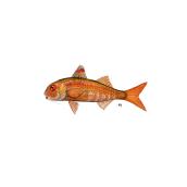 Ilustra peces. Un progetto di Design e Illustrazione di Angélica López de la Manzanara - 14.11.2020