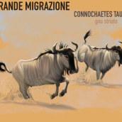 CONNOCHAETES TAURINUS WILDBEAST. A Illustration project by Valeria Carnevali - 11.15.2020