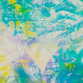 Botanischer Garten. A Photograph project by Maria Louceiro - 02.02.2020