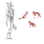 Fantastic Mr Fox. Un proyecto de Ilustración, Diseño de personajes, Dibujo a lápiz y Pintura a la acuarela de Félicie Haymoz - 05.02.2021
