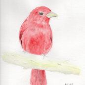 Mi Proyecto del curso: Acuarela artística para ilustración de aves. A Watercolor Painting project by Cristhian Rojas Granados - 02.28.2021