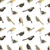 Mi Proyecto del curso: Diseño y composición de patterns textiles . Un projet de Création de motifs, Illustration numérique, Conception digitale , et Peinture numérique de Leo Scaratti - 04.03.2021