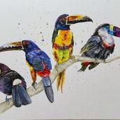 My project in Artistic Watercolor Techniques for Illustrating Birds course. Un proyecto de Ilustración, Bellas Artes, Pintura, Creatividad, Pintura a la acuarela, Dibujo realista y Brush painting de Colette Reed - 04.03.2021