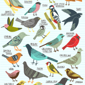 Birds of Portland. A Illustration project by Kate Sutton - 09.05.2020