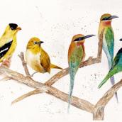 Mi Proyecto del curso: Acuarela artística para ilustración de aves. A Aquarellmalerei, Artistische Zeichnung und Naturgetreue Illustration project by Nadia Ham - 18.03.2021