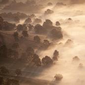 Landscape. Un progetto di Fotografia , e Fotografia artistica di Yaopey Yong - 08.04.2021