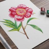 Mi Proyecto del curso: Ilustración botánica con acuarela. Un progetto di Illustrazione botanica di Natalia Molina Rico - 11.04.2021