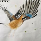 My project in Illustrating Nature: A Creative Exploration course. Un progetto di Disegno di claudia.martinowski - 11.04.2021