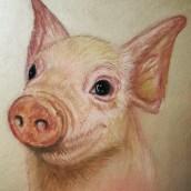 Pastellstifte Pig . Un projet de Illustration de Jazz - 12.04.2021
