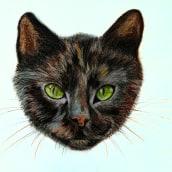 street cat Buntstifte . Un projet de Illustration de Jazz - 12.04.2021
