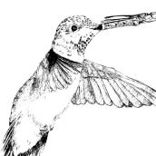 Mi Proyecto del curso: Ilustración surrealista con rotuladores. Un proyecto de Ilustración de Juan Mantilla - 17.04.2021