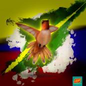 Colibrí-Colombia . Um projeto de Design, Ilustração, Desenho, Ilustração infantil e Ilustração botânica de Andrés Arboleda - 08.05.2021