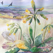 Cowslips on North Downs. A Illustration, Drawing, Watercolor Painting, Ink Illustration, and Naturalist Illustration project by louisedoveart - 05.14.2021