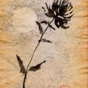 Meu projeto do curso: Introdução à pintura sumi-ê. A Illustration, Drawing & Ink Illustration project by Tereza Leme - 06.10.2021