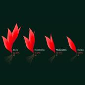 Land Defenders. Un proyecto de Diseño, Ilustración, Diseño editorial, Educación, Diseño gráfico, Arquitectura de la información, Diseño de la información, Infografía, Ilustración vectorial, Ilustración digital, Stor, telling, Diseño digital, Comunicación y Narrativa de Federica Fragapane - 11.06.2021