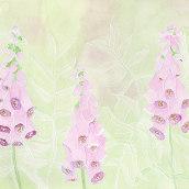 Mein Kursprojekt: Negative Aquarelltechniken zur botanischen Illustration. Un progetto di Illustrazione, Pittura ad acquerello e Illustrazione botanica di Sylvia Haendschke - 29.06.2021
