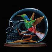 Humminbird Salamander. Um projeto de Ilustração de Ana Miminoshvili - 28.07.2021