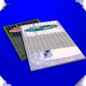 ZINE PORTFOLIO. Um projeto de Design, Fotografia, Direção de arte, Br, ing e Identidade, Design editorial, Design gráfico e Design de moda de Juan Ignacio Rodriguez - 31.07.2021