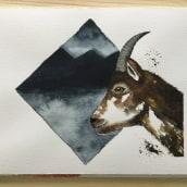 Mein Kursprojekt: Ausdrucksstarke Tierporträts in Aquarell. A Illustration, Aquarellmalerei, Realistische Zeichnung und Naturgetreue Illustration project by Barbara - 21.08.2021