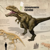 Giganotosaurus carolini. A Design project by Sebastián Martín - 08.02.2015