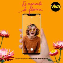 Proyecto: Filtros ilustrados para Facebook e Instagram Stories. A Design, Illustration, Marketing und Instagram project by Alejandra Rodríguez Vélez - 04.08.2020