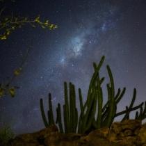 Noche en el desierto. A Outdoor Photograph project by fernandomz1991 - 09.21.2020