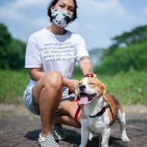 My Introduction to Dog Photography . Un proyecto de Fotografía documental de Nicolaus Bonaventura - 18.11.2020