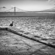 Lisbon from my eyes.. A Fine-art photograph, and Outdoor Photograph project by Pedro Valcárcel Rubio - 03.01.2020