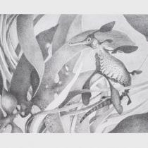 My project in Artistic Illustration Techniques with Graphite Pencils course. Un progetto di Illustrazione di Annemarie Sabelis - 03.01.2021