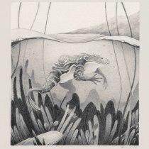 Mi Proyecto del curso: Técnicas de ilustración artística con grafito. Un progetto di Illustrazione, Disegno a matita, Disegno e Illustrazione naturalista di Ricardo Núñez Suarez - 02.02.2021