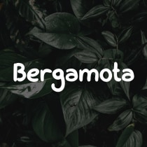 Bergamota (Font). A T, pograph, T, pograph, and design project by Christhian Gruhn - 03.10.2021
