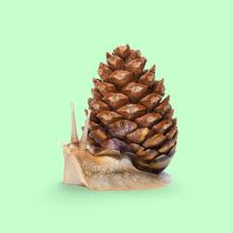 Mi Proyecto del curso: Creación de imágenes Pop Art con objetos cotidianos. Un progetto di Creatività, Fotografia digitale , e Fotomontaggio di pabloballes - 11.03.2021
