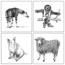 My project in Surrealistic Fineliner Illustration course: OKAPI / SLOTH / PIG / SHEEP. A Illustration project by Alena Prosecova - 03.27.2021