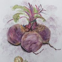 Beetroot and snail: the final meeting. A Watercolor Painting project by Katharine Lay - 04.20.2021