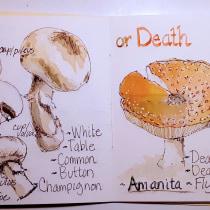 My project in Botanical Watercolor Sketchbook course. Un proyecto de Pintura a la acuarela de Marilyn Allen - 10.04.2021