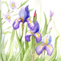 My project in Botanical Illustration with Watercolors course. Um projeto de Pintura em aquarela de Simona Cassisa - 05.05.2021