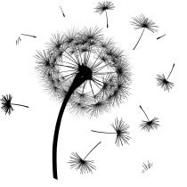 Blog: Dandelion. Um projeto de Marketing, Web design, Escrita, Cop, writing, Marketing digital, Marketing de conteúdo, e-commerce, Comunicación e Growth Marketing de Nathaly Sanabria - 20.05.2021