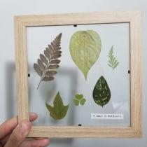 Mi Proyecto del curso: Técnicas básicas de prensado botánico. A H, werk, Bildende Künste, Collage und DIY project by Camila Toledo - 26.05.2021