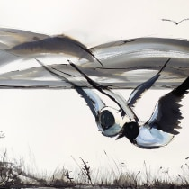 My project in Illustrating Nature: A Creative Exploration course. Um projeto de Ilustração, Pintura, Desenho, Pintura em aquarela, Ilustração com tinta e Ilustração naturalista de Judith Sutherland - 29.05.2021