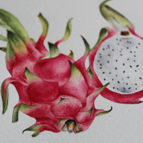 Mi Proyecto del curso: Cuaderno botánico en acuarela. Un progetto di Illustrazione, Pittura ad acquerello, Illustrazione botanica , e Sketchbook di Mari Nuñez - 27.05.2021