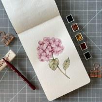 Mi Proyecto del curso: Cuaderno botánico en acuarela. Un proyecto de Ilustración, Pintura a la acuarela, Ilustración botánica y Sketchbook de Carla - 02.06.2021