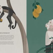 Jungle Book: Capuchin Monkey. Un progetto di Illustrazione vettoriale, Illustrazione digitale e Illustrazione infantile di sabrina.tillemans - 04.07.2021