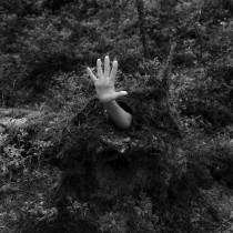 I Am The Forest - my project for the course Introduction to Narrative Photography . Um projeto de Fotografia, Stor, telling, Fotografia artística, Narrativa e Fotografia de interiores de Margarida Paiva - 17.07.2021